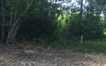 Lot20 Turnberry Circle Loxley, AL 36551 - Image 1