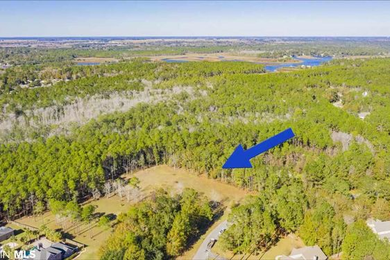 0 Mill House Rd Gulf Shores, AL 36542