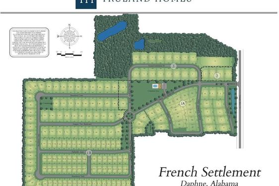27574 French Settlement Drive - Photo 3