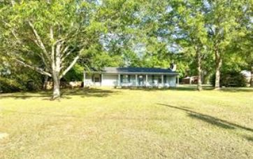 10901 DOUGLAS ROAD GRAND BAY, AL 36541 - Image 1