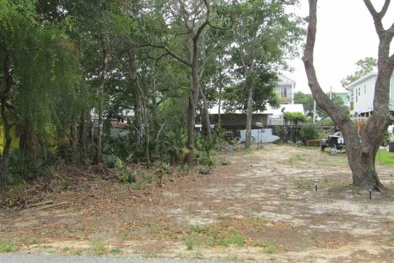 0 Armadillo Avenue - Photo 3