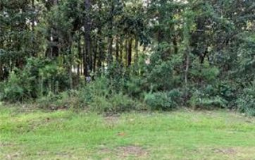 0 BEACH ROAD FOLEY, AL 36535 - Image 1