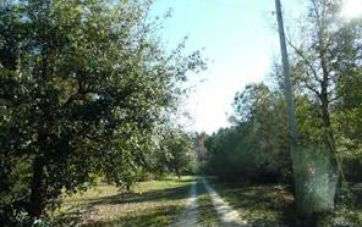 11894 BAY ROAD FOLEY, AL 36535 - Image 1