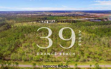 0 Roscoe Rd Orange Beach, AL 36561 - Image 1