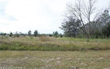 0 MCCOVERY ROAD MOBILE, AL 36695 - Image