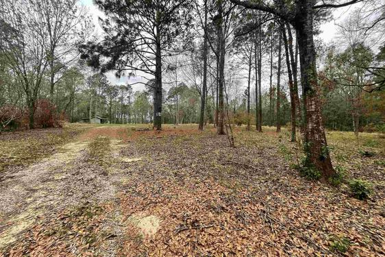 11180 Henderson Camp Rd - Photo 3
