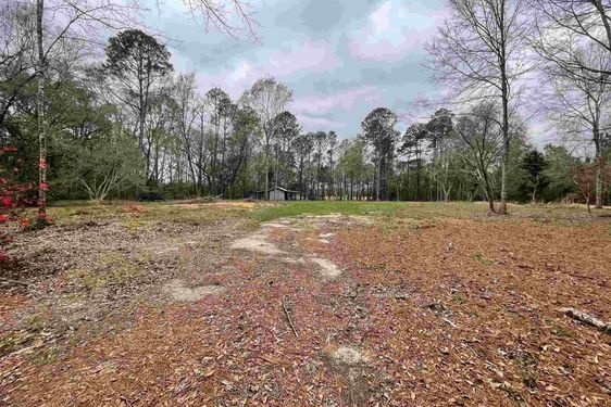11180 Henderson Camp Rd - Photo 4