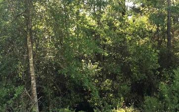 Lot 2 East River Road N Summerdale, AL 36580 - Image 1